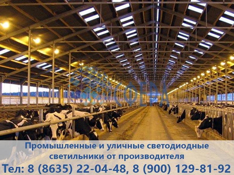 Освещение животноводческой фермы - картинка ГК Сфера